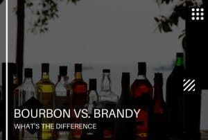 Bourbon vs Brandy: What's the Difference?